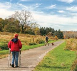 Healing Trails