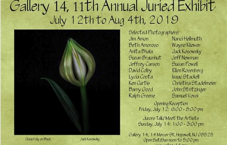 Gallery14 2019 11th Annual